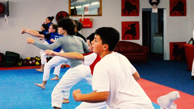 Onlinetraining für Karatekids und Karateyoungstars